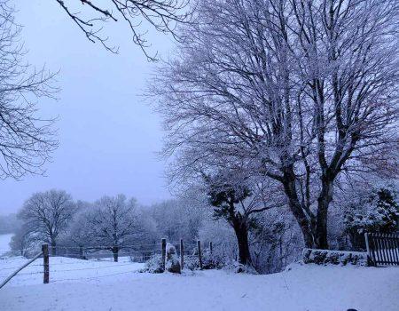 misc-snow