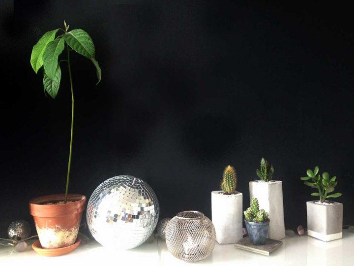 Connaissez-vous le regrowing ?