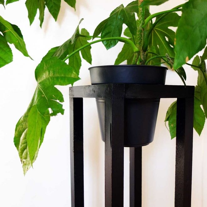 DIY Plant Stand*