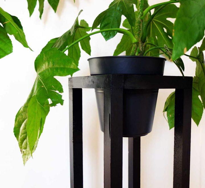 DIY Plant Stand*