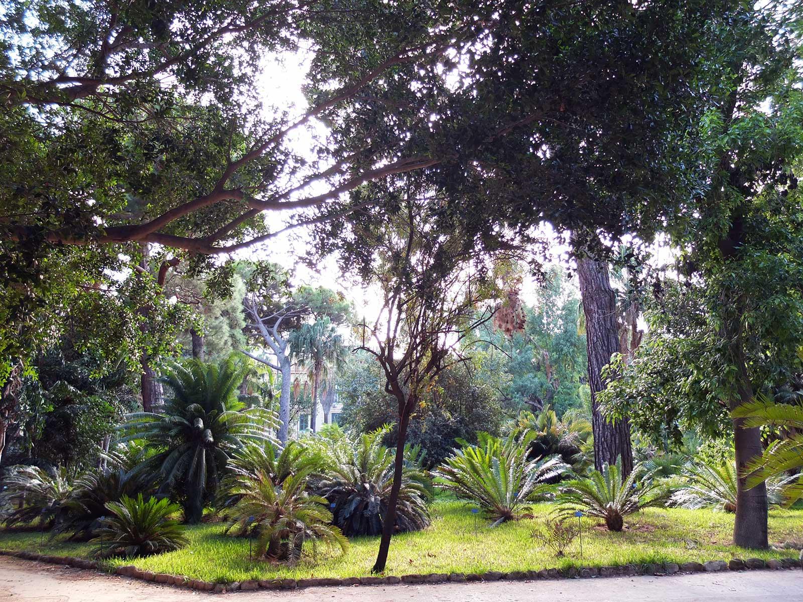 Misc Webzine-Road Trip Sicile