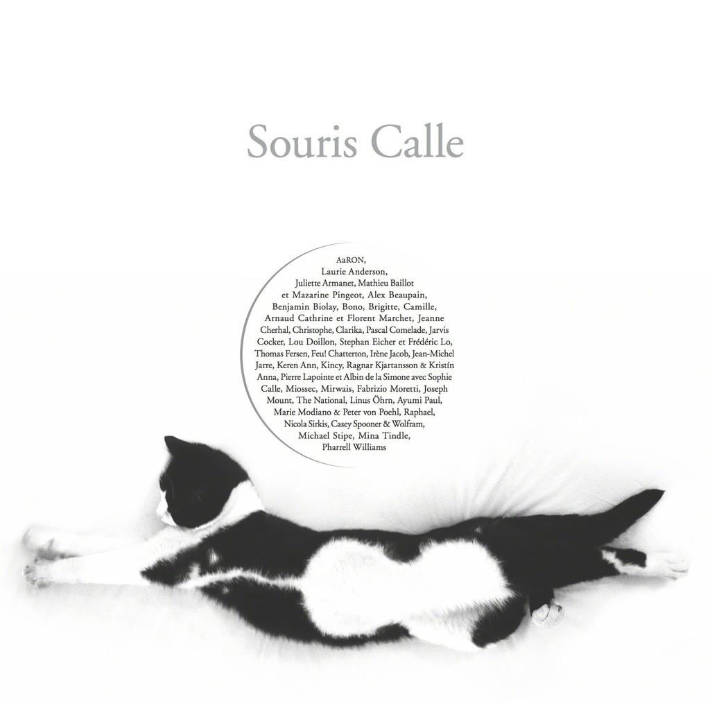 © Souris Calle - 1996-2014